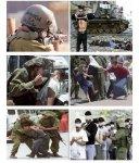 solidaridad_con_palestina-agungwpwordpresscom